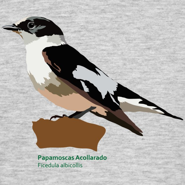 Papamoscas Acollarado-bird-shirt