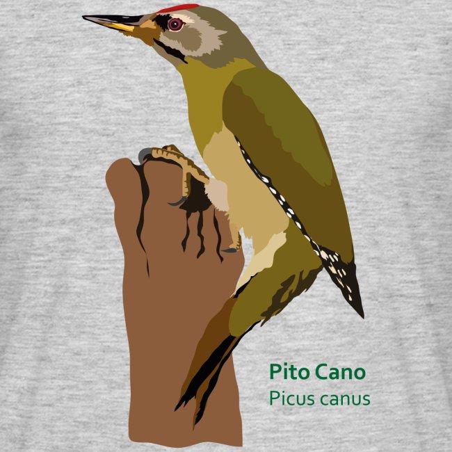 Pito Cano-bird-shirt