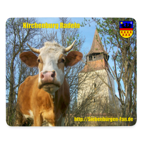 Motiv ~ Kirchenburg in Radeln/Roades