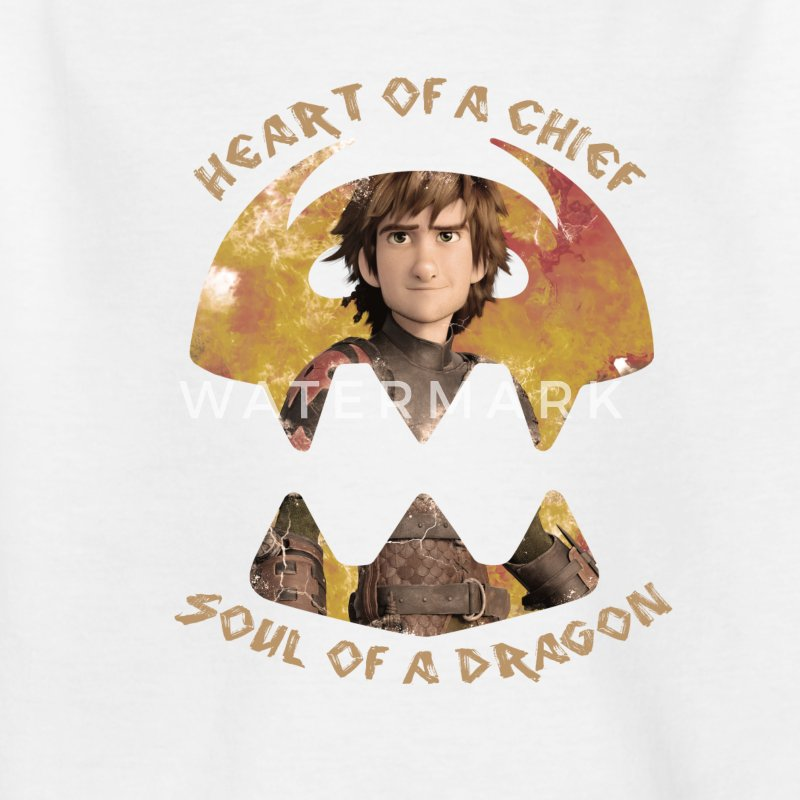 Dreamworks Dragons Hicks Kinder T-Shirt - Kinder T-Shirt