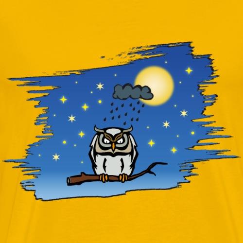 Eule Vollmond night owl moon stars blue sky rain