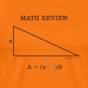 Math review-triangle - Men's Premium T-Shirt