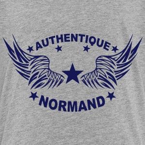 normand authentique 2 logo aile 6 1107