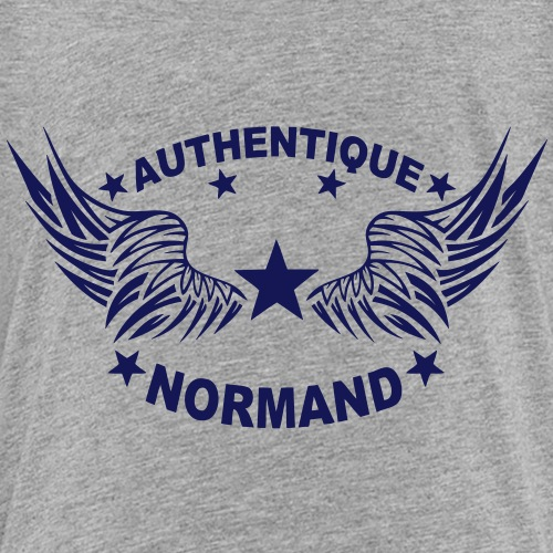 normand authentique 2 logo aile 6 1107