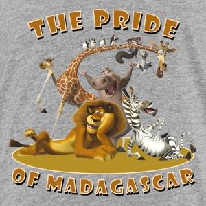 Madagascar The pride of Madagascar Teenager T-Shir - Teenage Premium T-Shirt