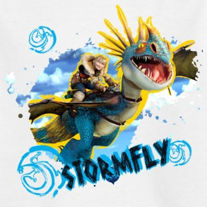 DreamWorks Dragons 'Stormfly' Teenager T-Shirt - Teenage T-shirt