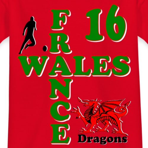 Wales Dragons football 2016