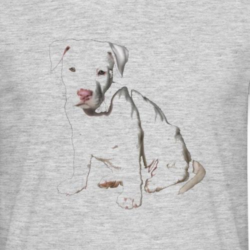 Hund Pit Bull