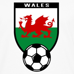 Football fan shirt Wales 2016 Long sleeve shirts - Men's Premium Longsleeve Shirt