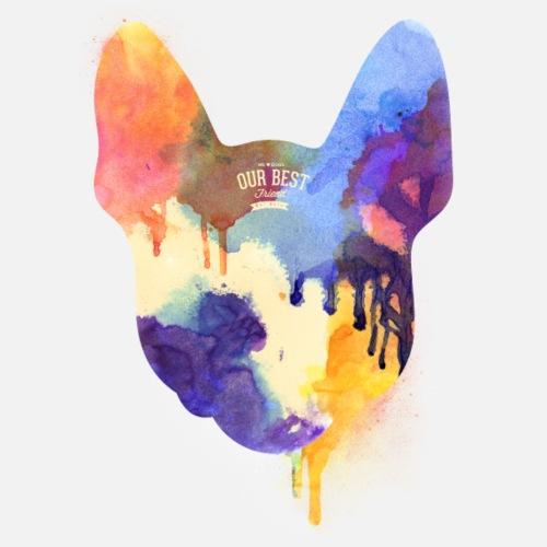 Colorful French Bulldog