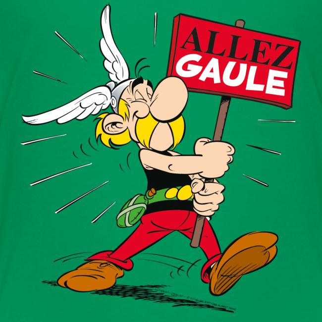 Asterix & Obelix - Asterix: 'Allez Gaule!'