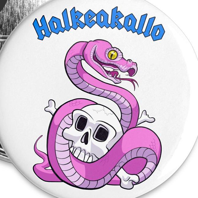 Halkeakallo Pins