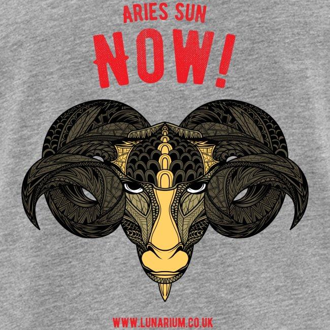 Aries Sun Men's Premium Tank Top