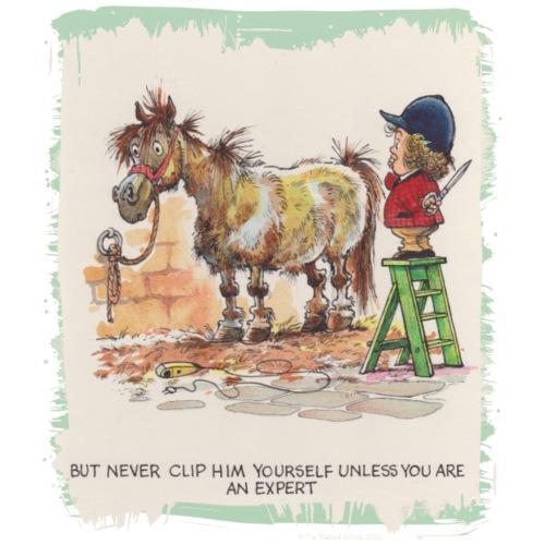 Thelwell - Pony beim Friseur