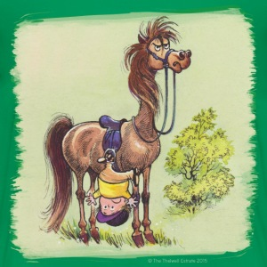 Thelwell Pony Rider is headlong - Teenage Premium T-Shirt