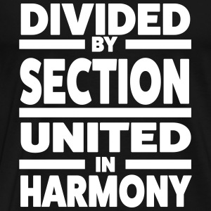 Divided by section - United in Harmony T-Shirts - Men's Premium T-Shirt