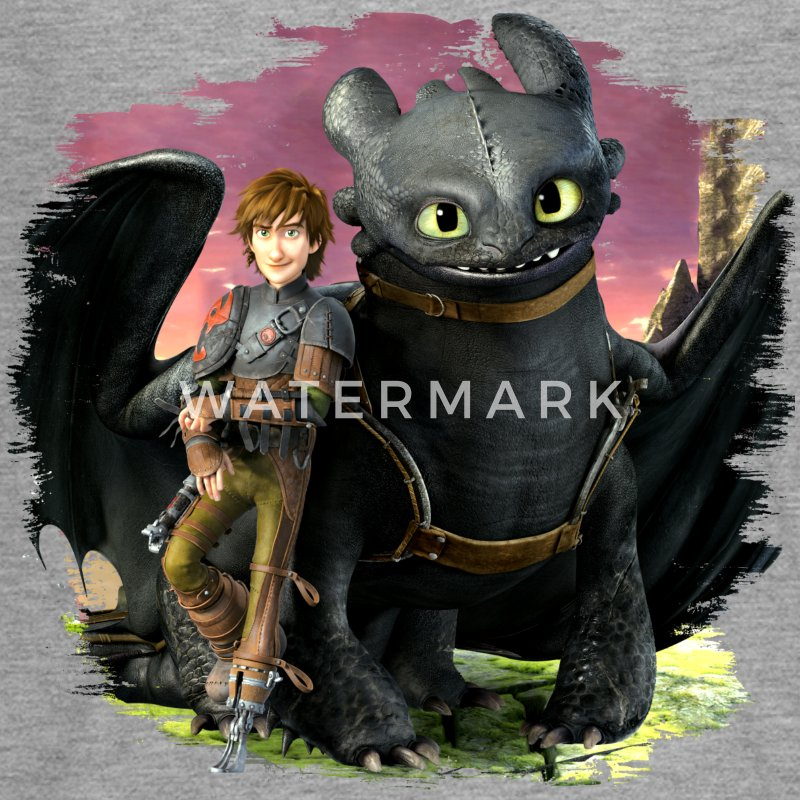 Dreamworks Dragons 'Hiccup and Toothless cool' - Teenagers' Premium Longsleeve Shirt