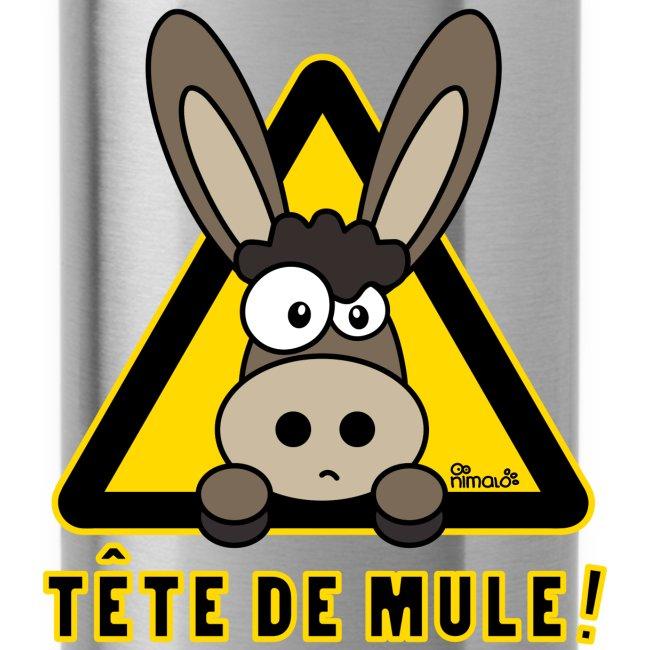 Gourde Âne, Tête de Mule