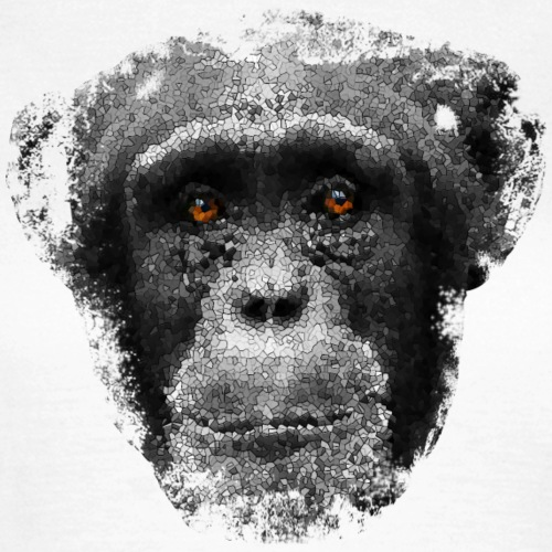 monkeyface gray