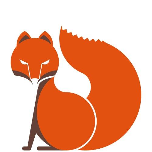 FOX FX Klein