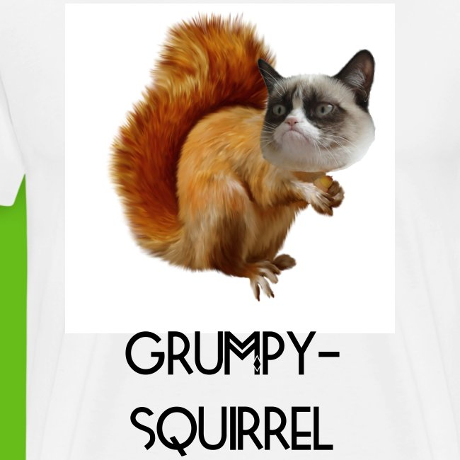 Grumpy-squirrel | man | shirt