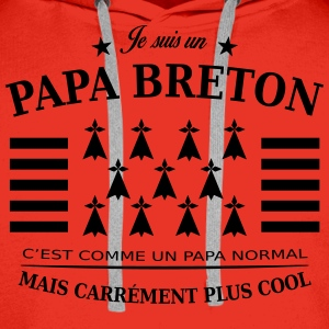 papa breton Sweat-shirts - Sweat-shirt à capuche Premium pour hommes