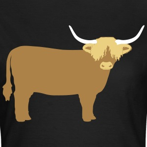 Highland Cattle T-Shirts - Frauen T-Shirt