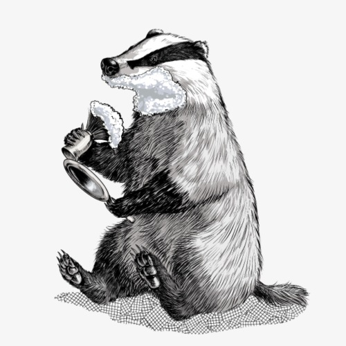Badger Shaving