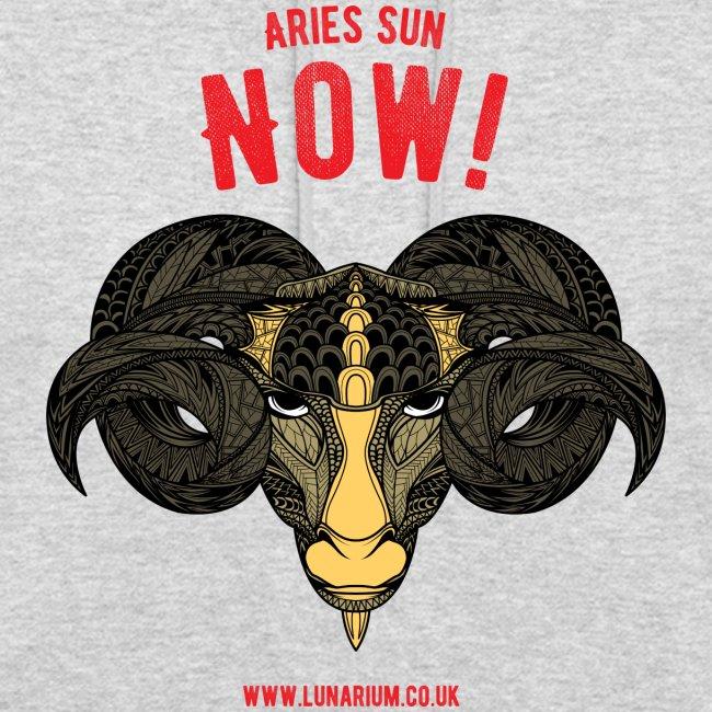 Aries Sun Unisex Hoodie
