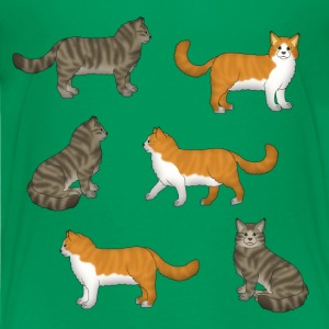 Norwegische Waldkatze  T-Shirts - Teenager Premium T-Shirt