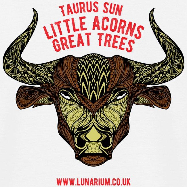 Taurus Sun Men's T-Shirt