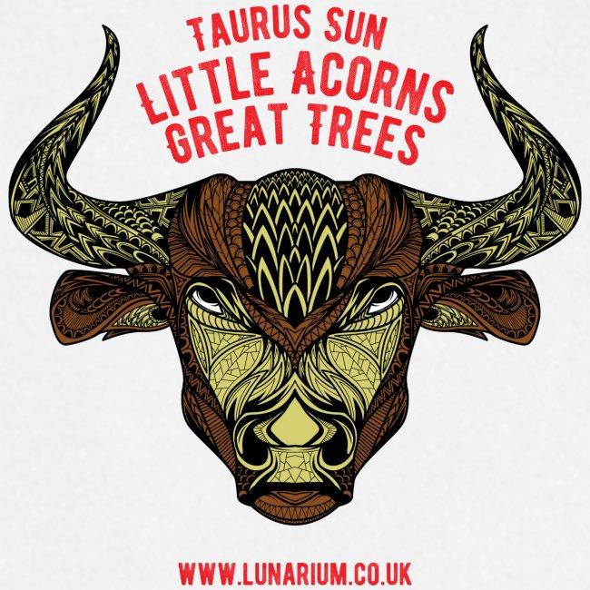 Taurus Sun Cooking Apron
