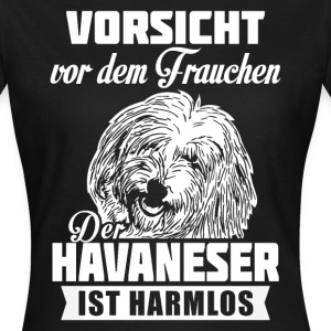 Bichon havanais - attention Tee shirts - T-shirt Femme