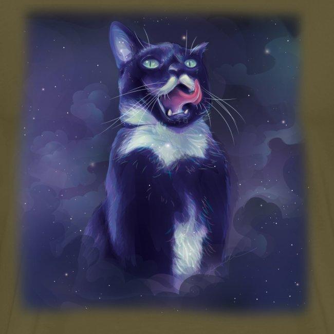 Stalin the Cat Galaxy Men's Tee