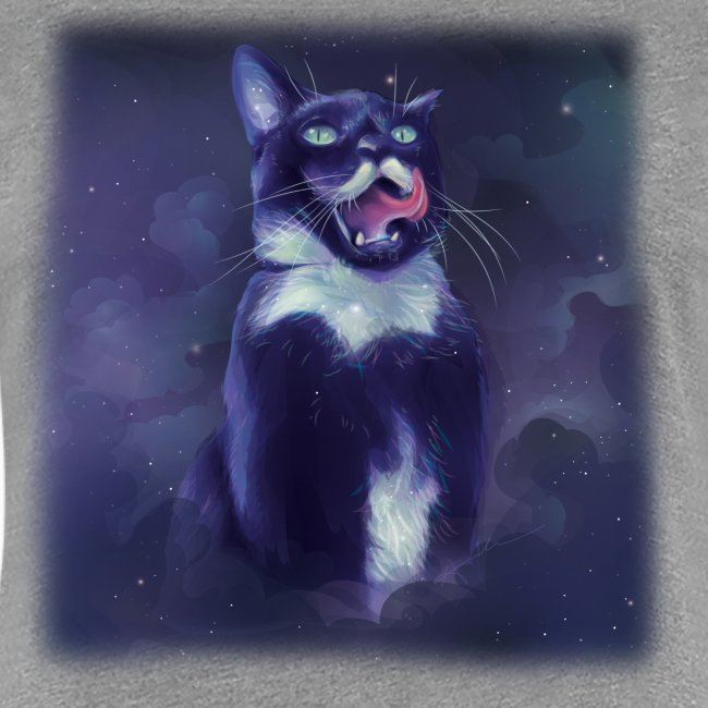 Stalin the Cat Galaxy Women's Tee