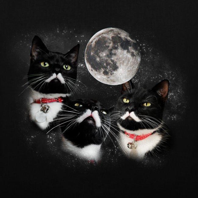 Three Stalins and a Moon Bag