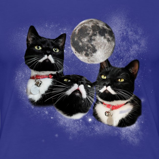 Three Stalins and a Moon Women's Tee