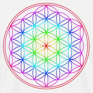 Blume des Lebens - Flower of Life -  Rainbow T-Shirts - Men's Premium T-Shirt