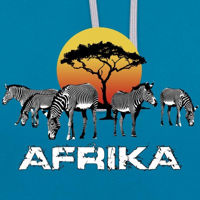 Zebra Afrika Sonnenuntergang Wildlife Safari Kenia