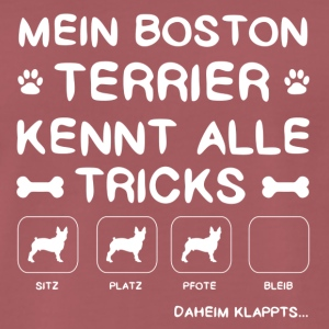 Boston Terrier Tricks - Männer Premium T-Shirt