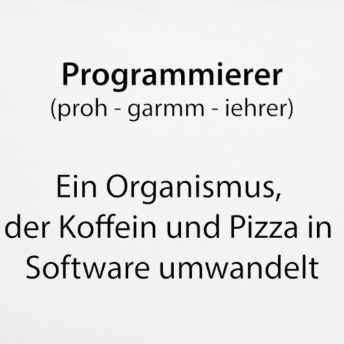 Programierer