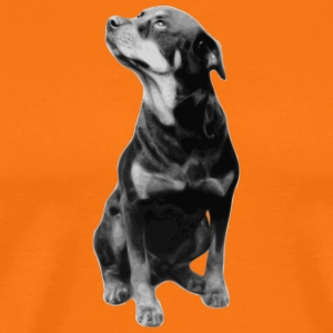 BIG DOG COLLECTION - Männer Premium T-Shirt