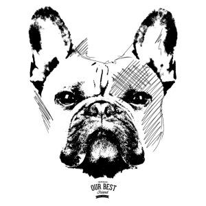 Französische Bulldogge Sketch