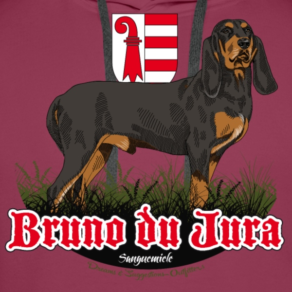 bruno du jura Sweat-shirts - Sweat-shirt à capuche Premium pour hommes