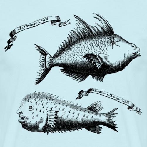 Strange Fish - Komische Fische