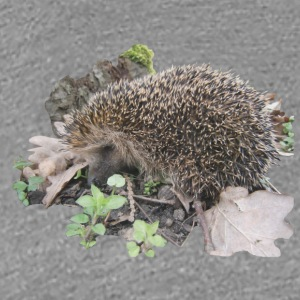 hedgehog - Premium-T-shirt dam