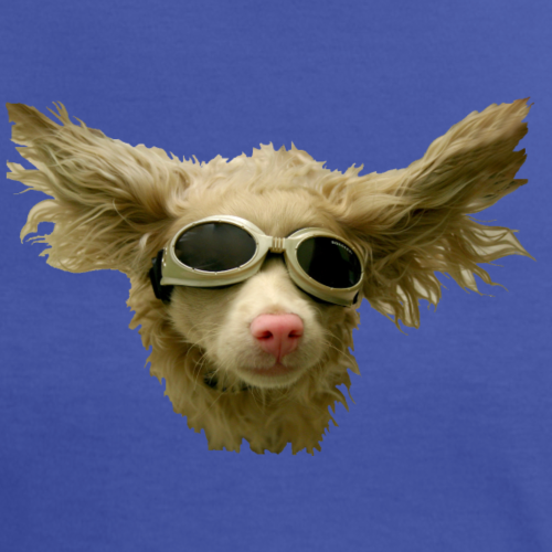 cool_doggles