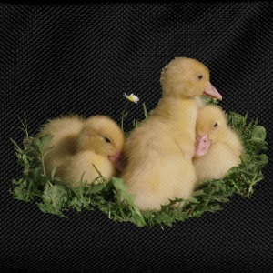three cute duck chicks in the grass - Kids' Backpack
