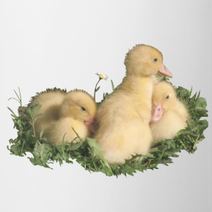 three cute duck chicks in the grass - Mug