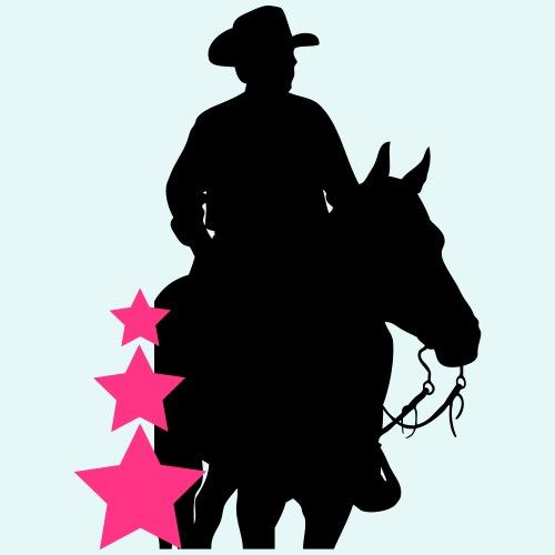 Cowboy , Horse and Stars